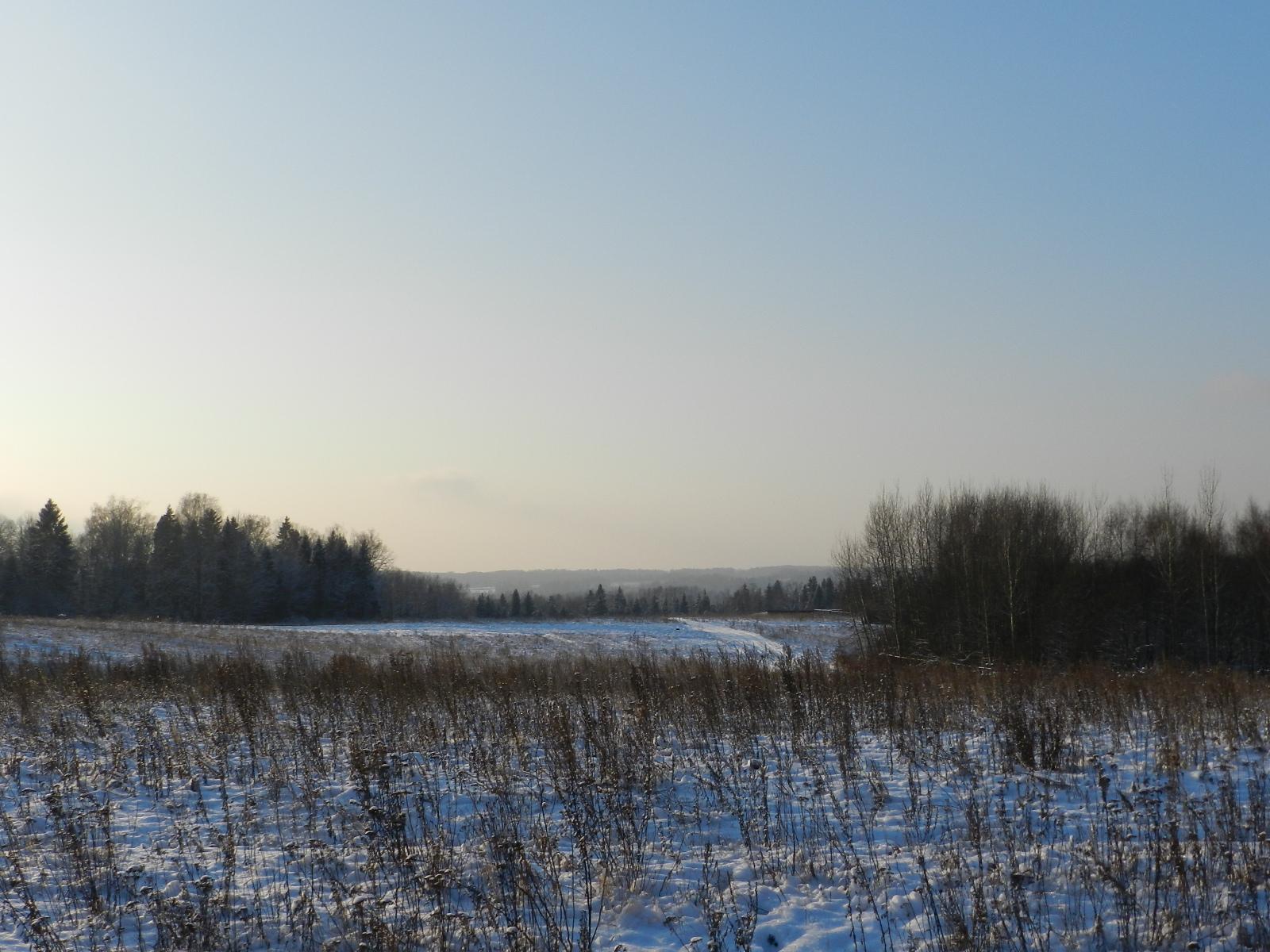 zimnee pole i uchastki