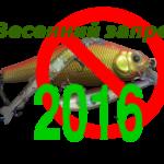Нерестовый запрет 2016