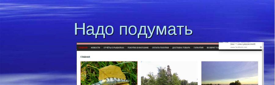razrabotka rybolovnogo internet magazina