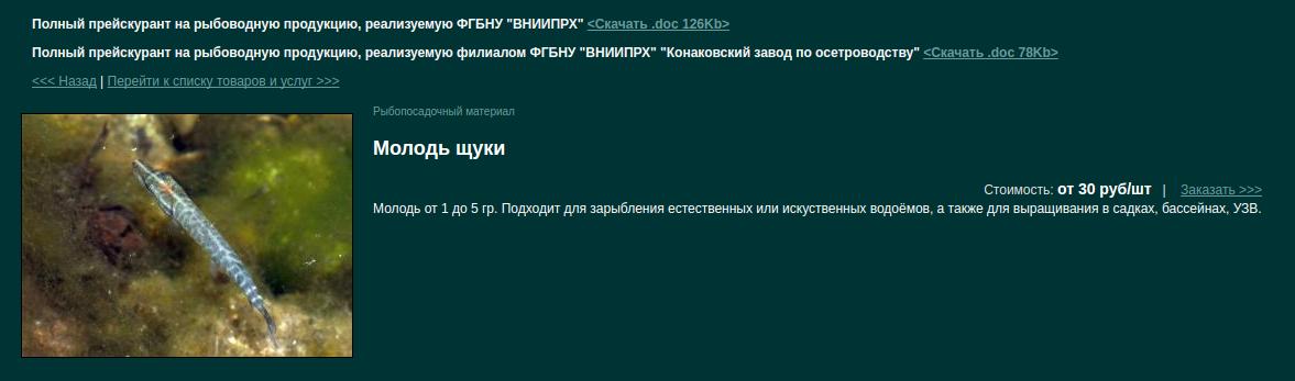 Рыбхоз в Дмитрове-купить малька 3