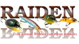 2017 год и новые имена рыболовных брендов — Часть 3, RAIDEN