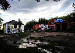 Московское бесклёвье-июнь/июль 2017 года