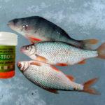 Всесезонная Икра для рыбалки зимой и летом