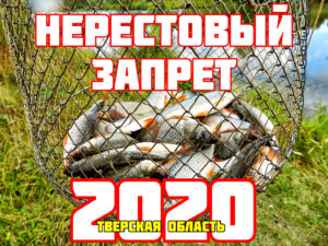 Nrestovyj-zapret-2020-Tverskaya-oblast