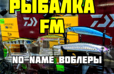 rybalka-fm-i-voblery-no-name