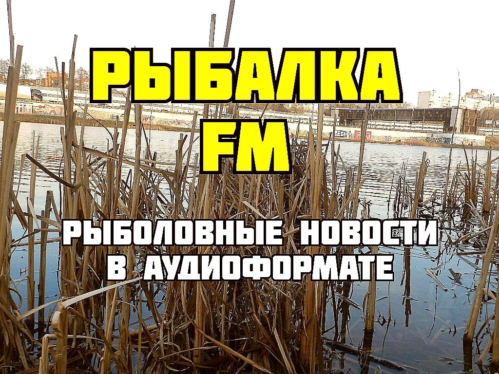 Rybalka-FM-koronavirus-i-rybolovnye-novosti